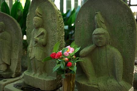 2011.03.04 鎌倉 報国寺 竹林の石仏に椿