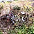 還れない自転車