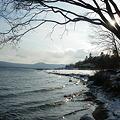 支笏湖冬1