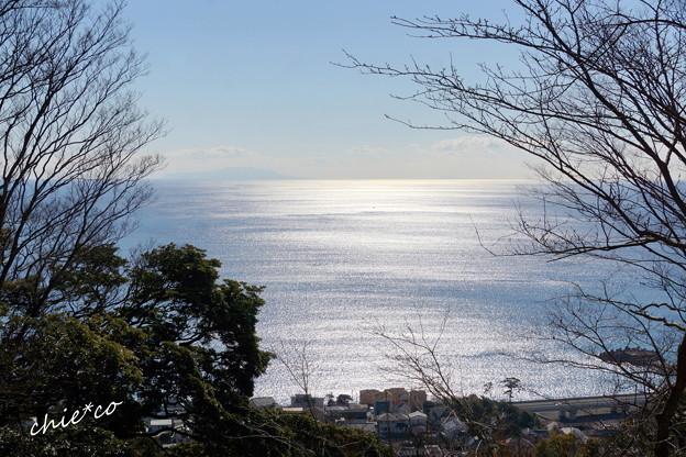 吾妻山公園-152