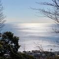 写真: 吾妻山公園-152