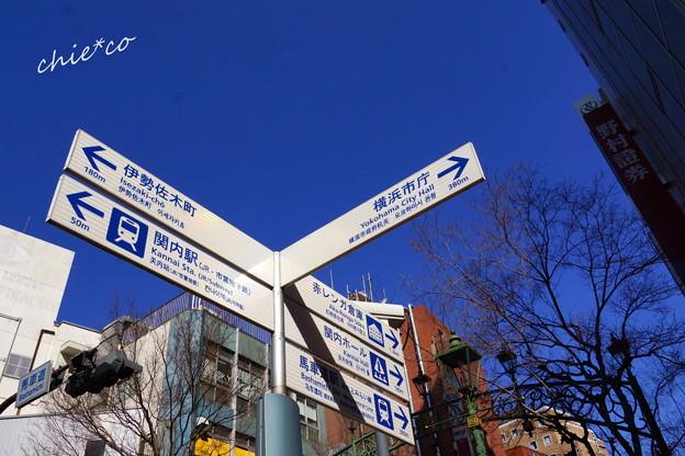 関内~野毛~吉田町さんぽ-105