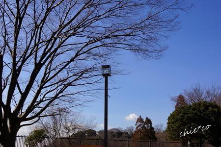 金沢自然公園-252