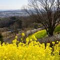 写真: 金沢自然公園-280