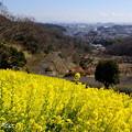 写真: 金沢自然公園-276