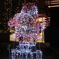 lightup christmas?