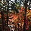 Photos: 97仁王門から振り返る