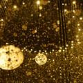 Photos: 金色時雨