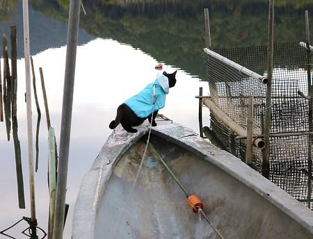 ボートの大冒険チャンプ10