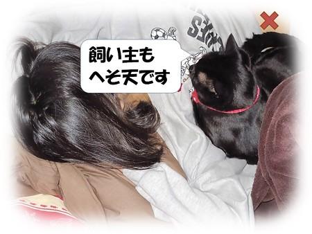 黒猫チャンプの体拭き4