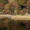 写真: 秋景色の写り込み!20141115