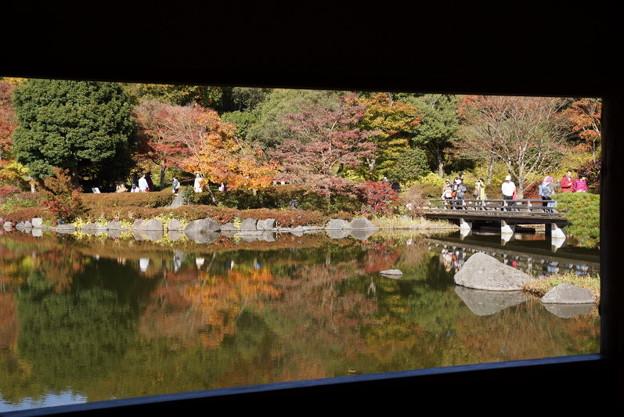 額縁の紅葉風景141115-7625