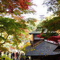Photos: 紅葉の聴秋閣2014