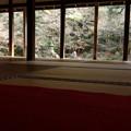 写真: 蓮華寺の晩秋風景!
