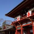 写真: 鎌倉鶴岡八幡宮本宮