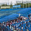写真: 2011/05/31 早稲田応援席@慶早2回戦