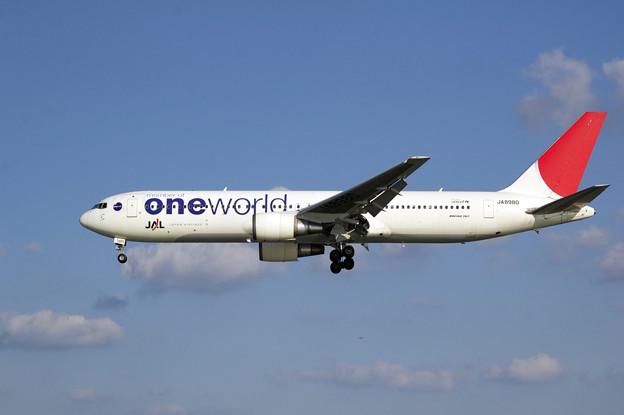飛行機 JAL ONEWORLD ワンワールド
