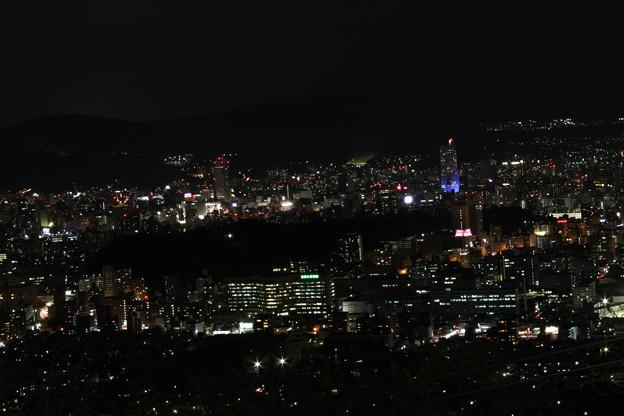 黄金山の夜景 (4)