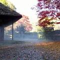 rs-141127_紅葉の薬師池公園 (404)