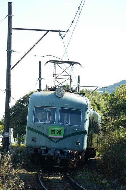 Photos: 駆けるズームカー2