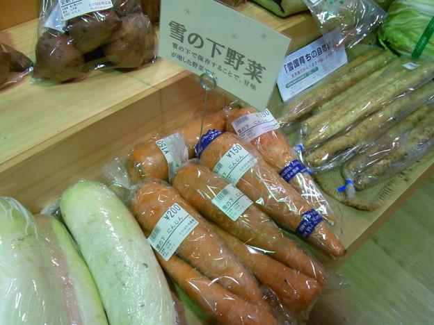 【東北】雪の下野菜|山形[2015]