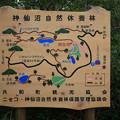 140828-74北海道ツーリング・神仙沼・神仙沼自然休養林
