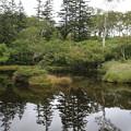 140828-88北海道ツーリング・神仙沼湿原の沼