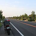 写真: 100515-12朝陽に輝く道