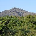 写真: 100515-13朝陽に輝く桜島1