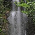 Photos: 100521-29清水の滝(1/3)