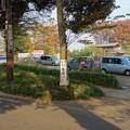 写真: 本土寺@松戸DSC08834