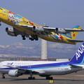 Photos: B767-300 JA8285 オリンピック招致 2009.04