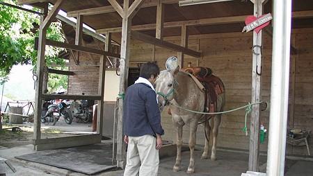お馬さんに遊ばれるOWAさん
