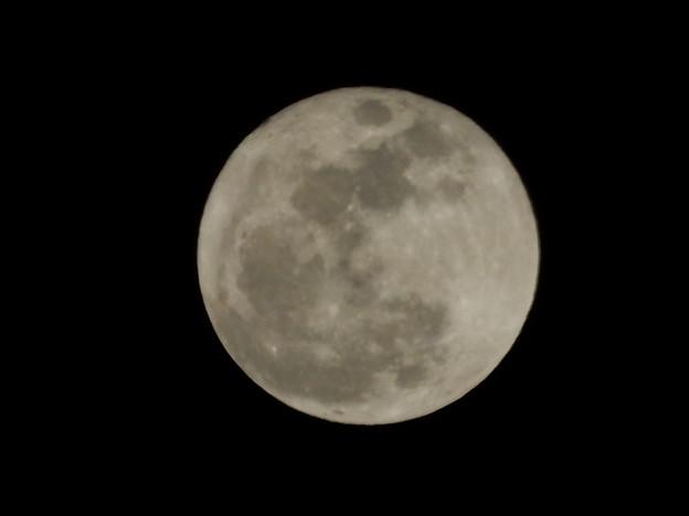 「満月」の画像検索結果