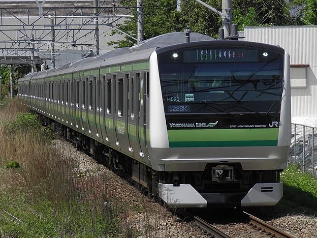 P5020004