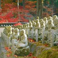 羅漢さまも菩薩さまもご満悦。