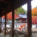 秋色の備後路~古刹・巨蟒橋~
