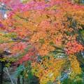 写真: 備後路 開山堂の秋色