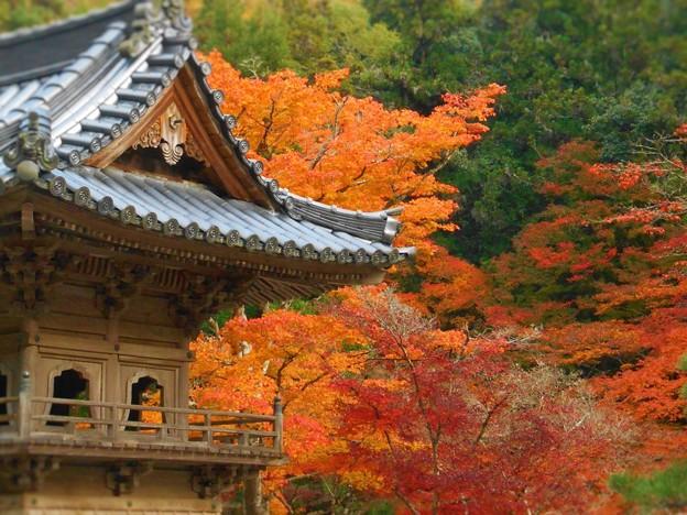 写真: 備後路 鐘楼の秋