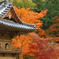 備後路 鐘楼の秋