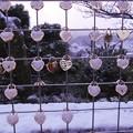Photos: ずっと一緒にいようネ♪~恋人の聖地 in 千光寺山~