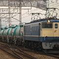 写真: pf1041-20081228