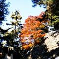 Photos: higashi01