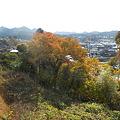 Photos: 秋川を目指して歩き中☆
