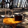 自動風流装置と野燗炉