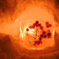 Photos: 赤い実とじこめて