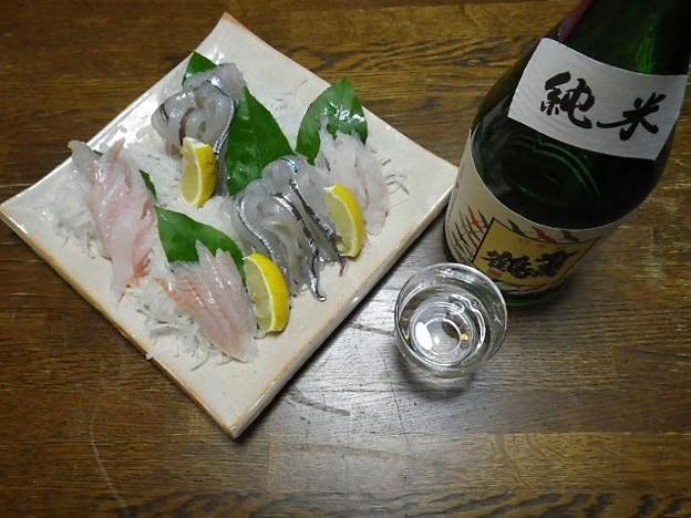 RIMG3546東広島市、賀茂鶴純米、レンチョウ(舌平目)とサヨリの造り