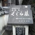 Photos: 長門市、鯨墓