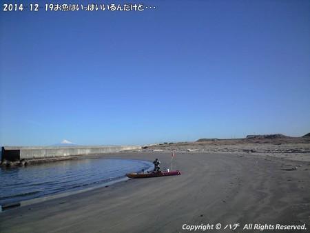 2014-12-19お魚はいっぱいいるんだけど・・・ (4)