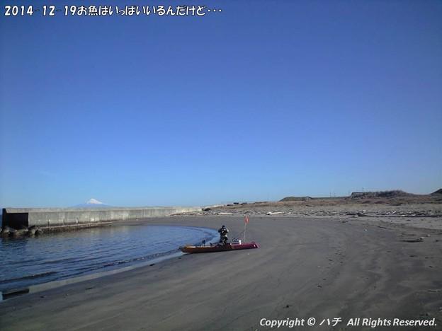 写真: 2014-12-19お魚はいっぱいいるんだけど・・・ (4)